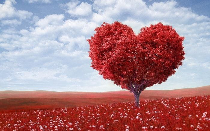 reduce risk heart disease